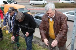 OB Hans Wagner schneidet Weinreben zurecht