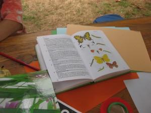 Gartenprogramm für Kinder (Foto: Frank Ehrmantraut)